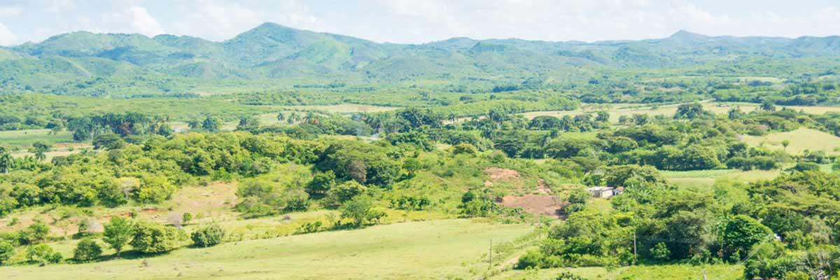 Cuban-countryside